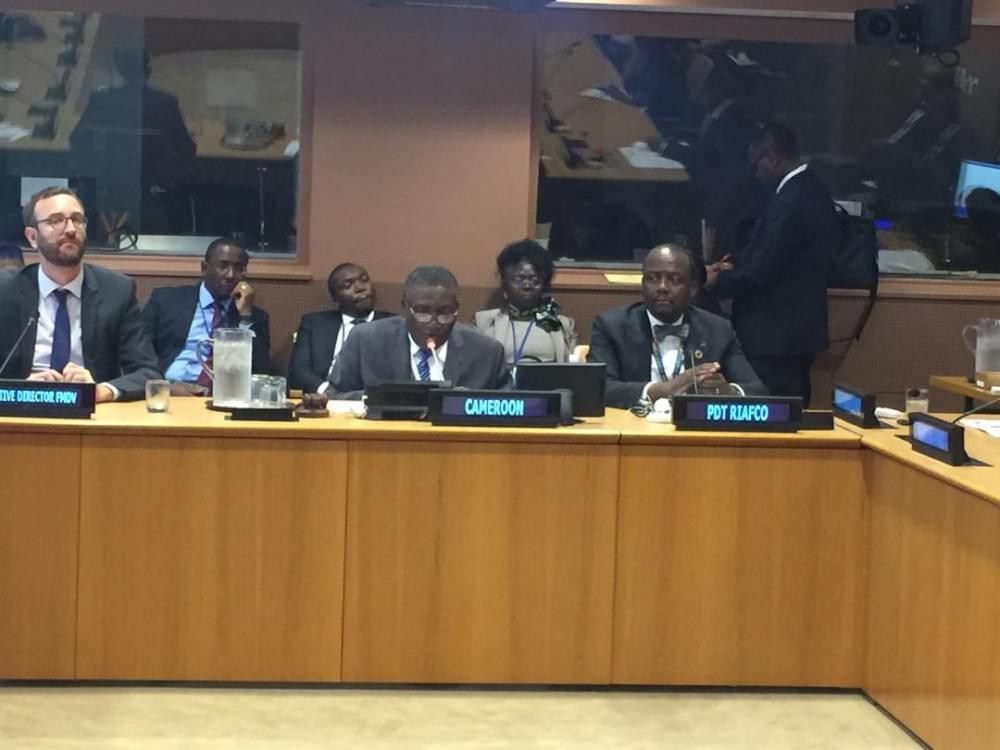 UN Climate Summit : Cameroon Launches New Climate Finance Platform For Local Councils