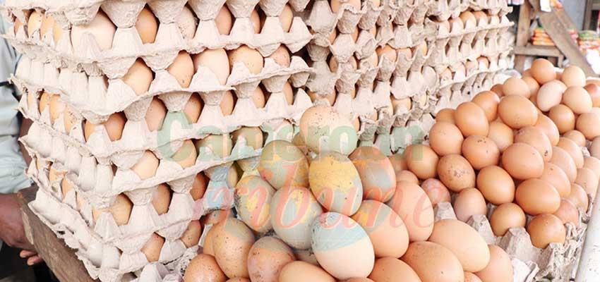 Inflation : les œufs d'or…