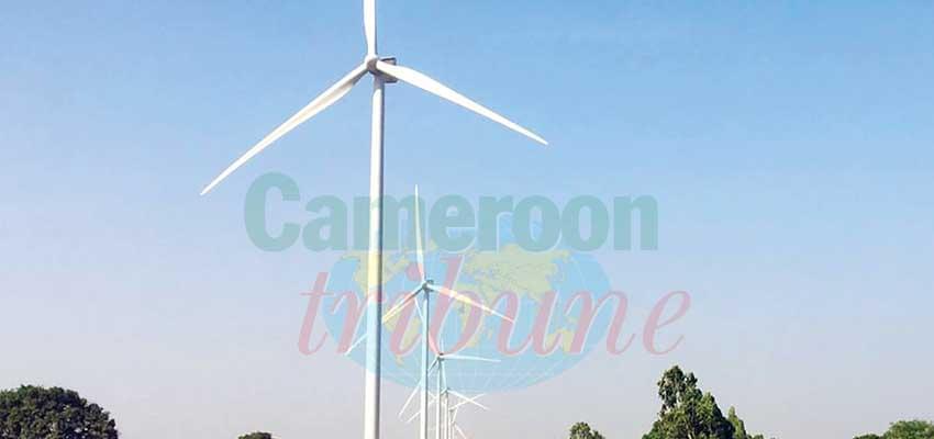 Le parc éolien de Taïba Ndiaye.