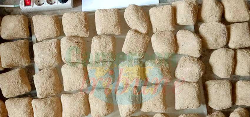 Douala : 18 kg de drogue saisis à l'aéroport