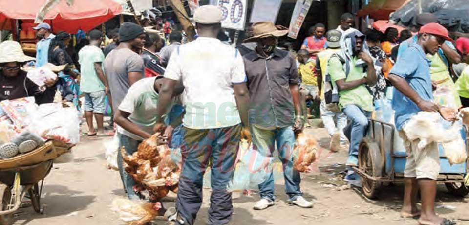 Au marché : le poulet à prix d'or