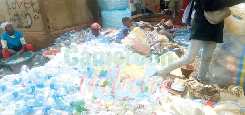 Plastic Bottles Trade : Menial But Lucrative
