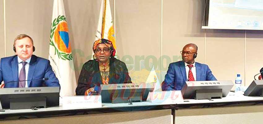 Organisation internationale de la protection civile :  la victoire du Cameroun