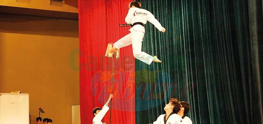 Une démonstration de force de l'équipe nationale sud-corenne de taekwondo.