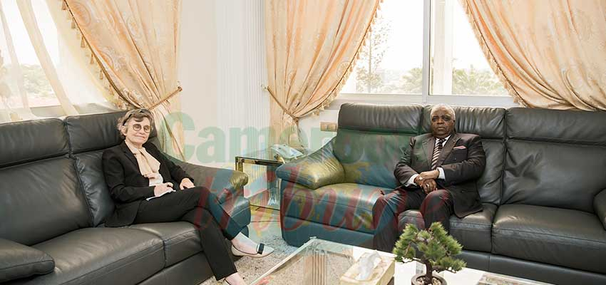 Coopération Cameroun - Allemagne : l'ambassadeur prend contact