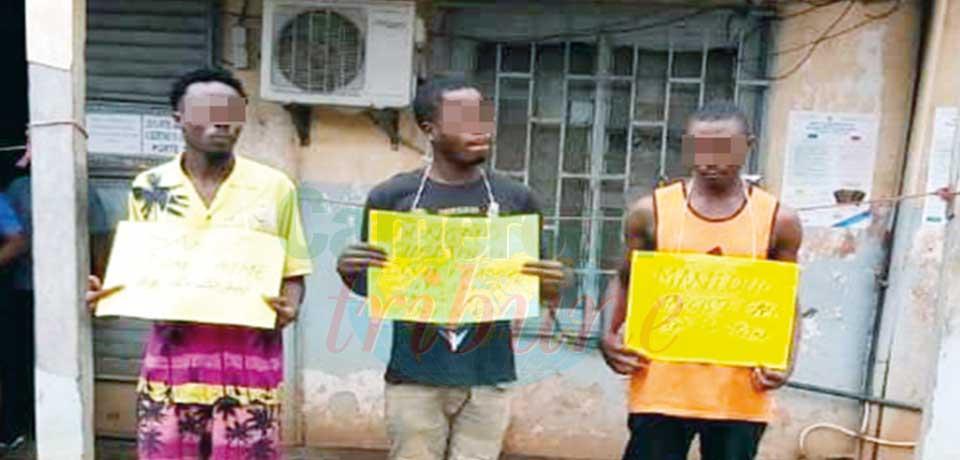 Narcisse Manfo, Elvis Dongmo Chedjou et Aimé Sande, ont été appréhendés le 29 juin dernier à Douala, par éléments de la Division régionale de la police judiciaire du Centre.