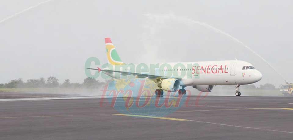 Bienvenue au Cameroun !