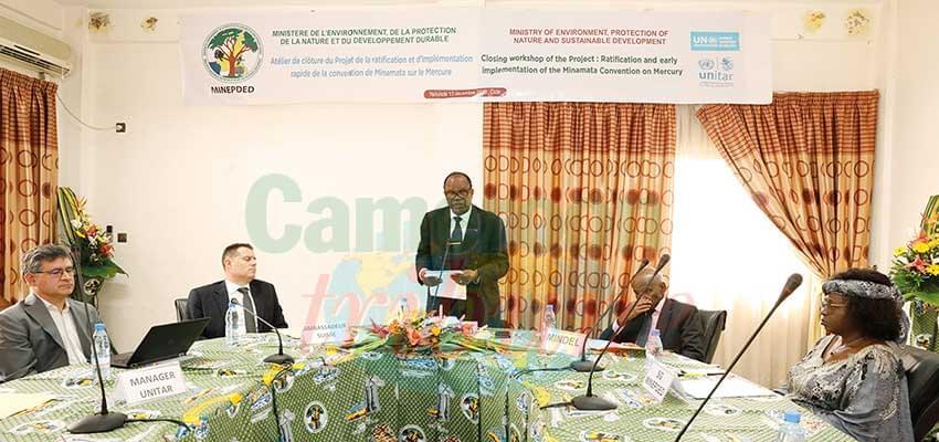 Lutte contre la pollution au mercure : le Cameroun résolument engagé
