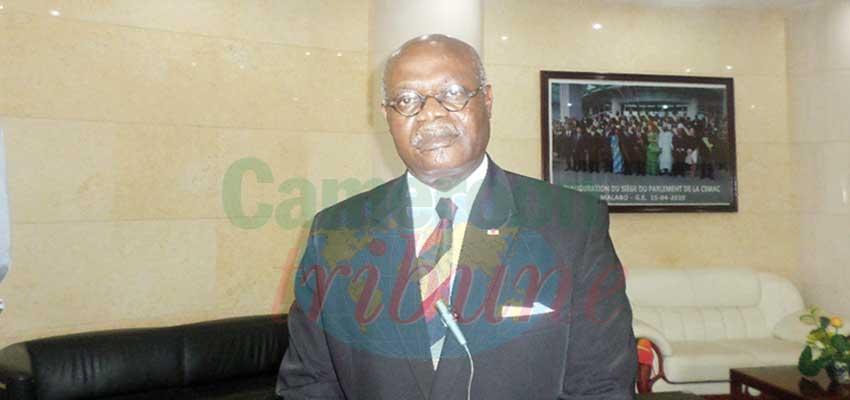 « Les plus hautes autorités du Cameroun nous ont accordé l'investiture »