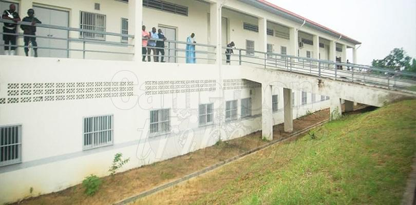 Douala Vocational Training Centre: Fruit of New Vision Technical Education