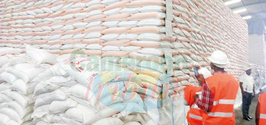 Distribution du sucre : près de 50 000 tonnes disponibles