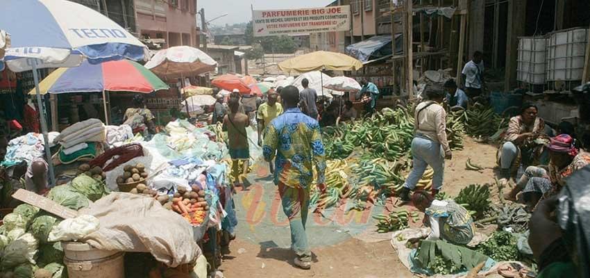 Image : Situation monétaire du Cameroun: Les signaux sont bons