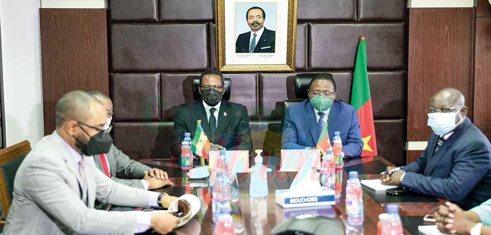 Cameroun-Guinée équatoriale : on parle hydrocarbures