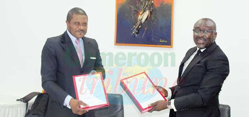 Recherche et sauvetage des avions  : le Cameroun s'allie au Gabon et au Tchad