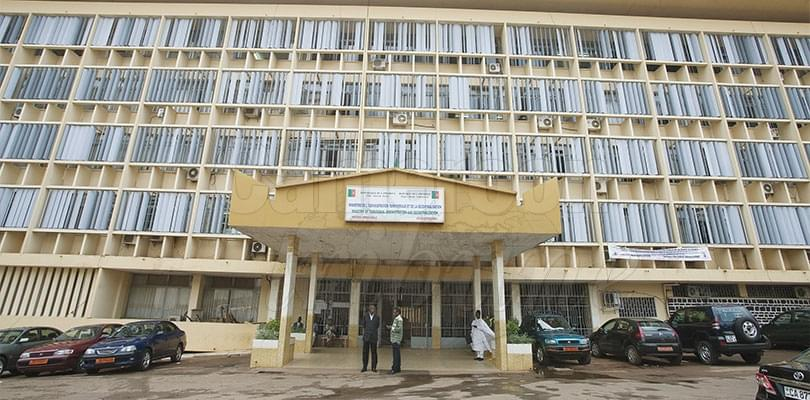 Administration: Great Security, Organisation Guarantor