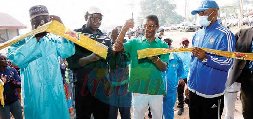 Commerce de fruits : Yaoundé à un nouveau marché