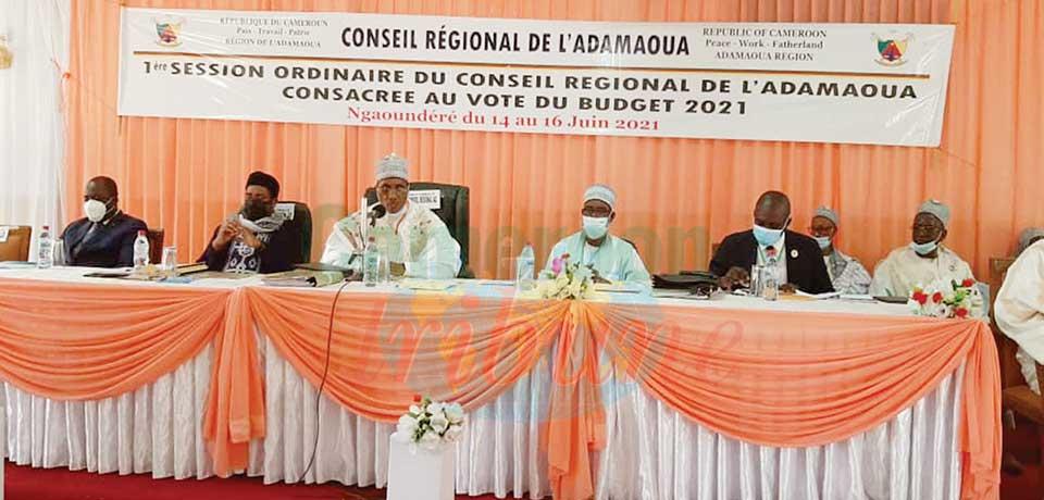 Budget du conseil régional Adamaoua : priorité à l'éducation scolaire