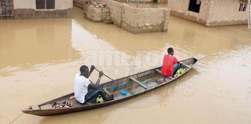 Image : Nigeria: l'état de catastrophe nationale décrété