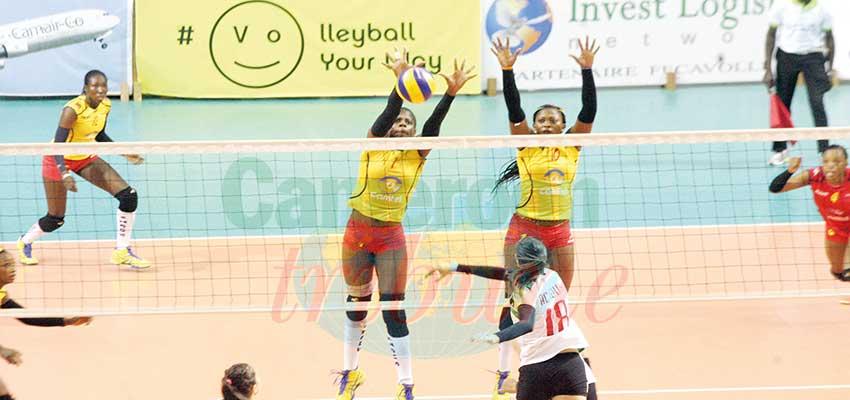 Championnat d'Afrique de volleyball féminin: le programme de préparation connu