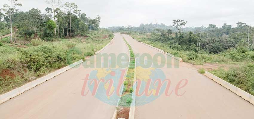 Yaoundé-Nsimalen : l'autoroute prend forme