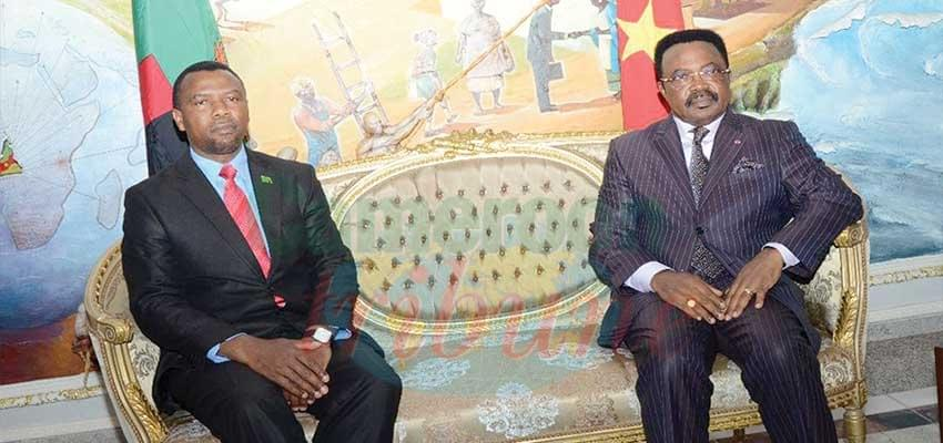 Image : Cameroon-Zambia Ties : High Commissioner Presents Accreditation Papers
