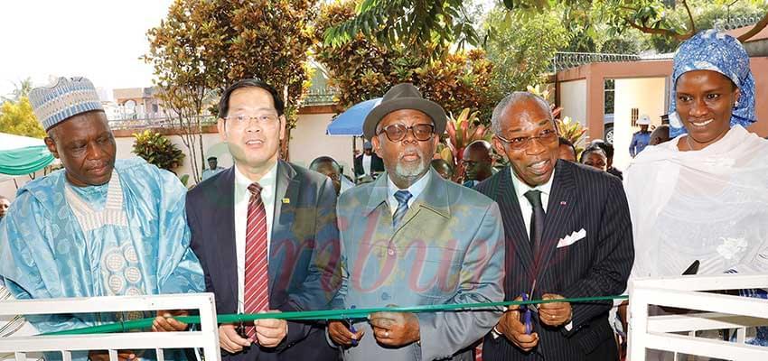 Organisation internationale pour le Bambou et le rotin : le bureau Afrique centrale inauguré