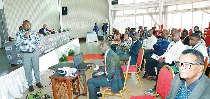 Le moteur de recherche ambitionne être le Alibaba du Cameroun.