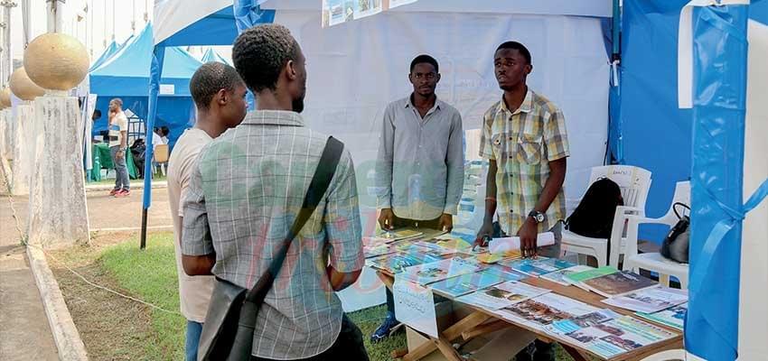 Image : Emploi-jeunes: des opportunités pleuvent