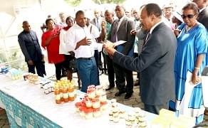 Image : Journée internationale de l'alimentation: la touche de Douala