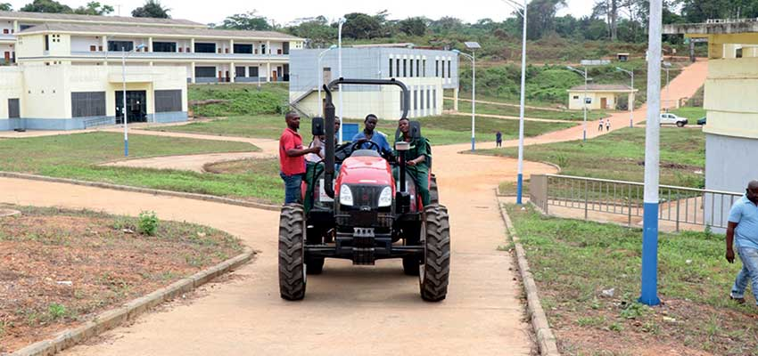 Yabassi Technical and Professional Agricultural High school: Enabling Environment Producing Results