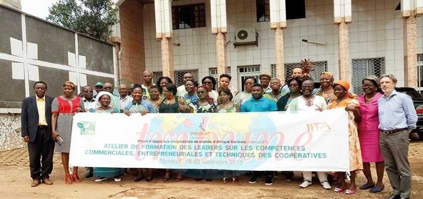 Image : Transformation du manioc: des coopératives mieux outillées