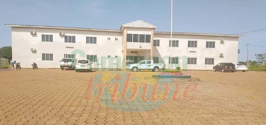 Le secteur des douanes de l'Adamaoua déplore des difficultés matérielles.