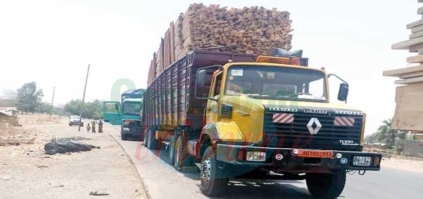 Corridor Douala-Bangui: le trafic a repris