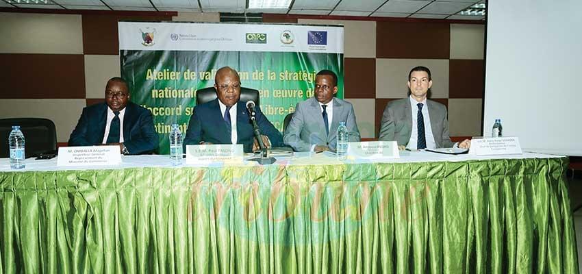 Zone de libre-échange continentale africaine : le Cameroun prépare sa stratégie