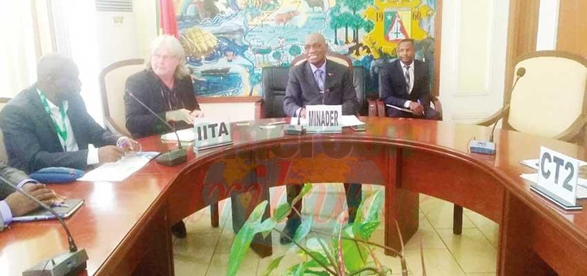 Recherche agricole: l'IITA propose son expertise
