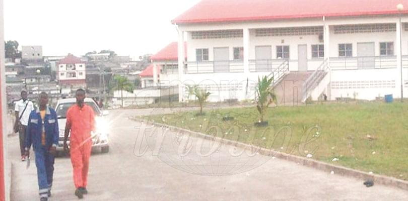Image : Limbe Vocational Training Centre: Another Development Tool For South West Region