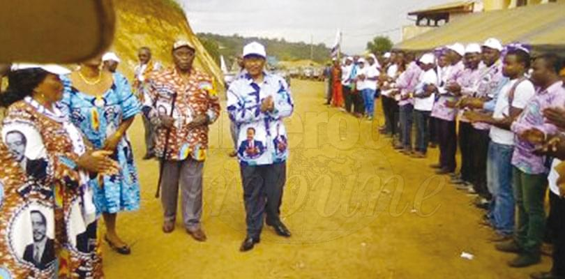 Image : CPDM: Minister Nganou Canvasses For Votes
