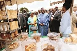 'Made In Cameroon' Products: Network For Processing, Marketing Gaining Grounds