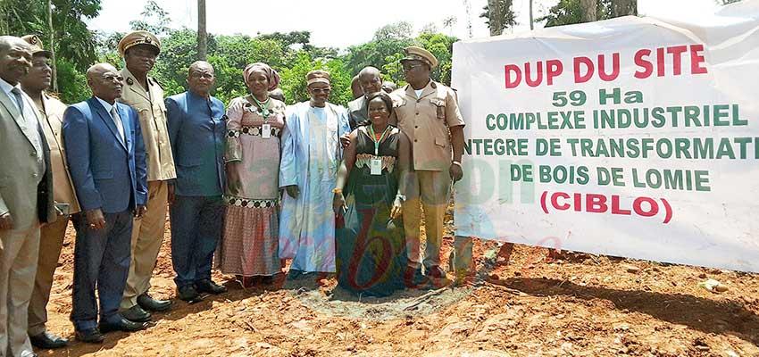 Transformation du bois: le complexe industriel de Lomié prend corps