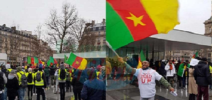 Image : Diaspora : ces chroniqueurs du chaos