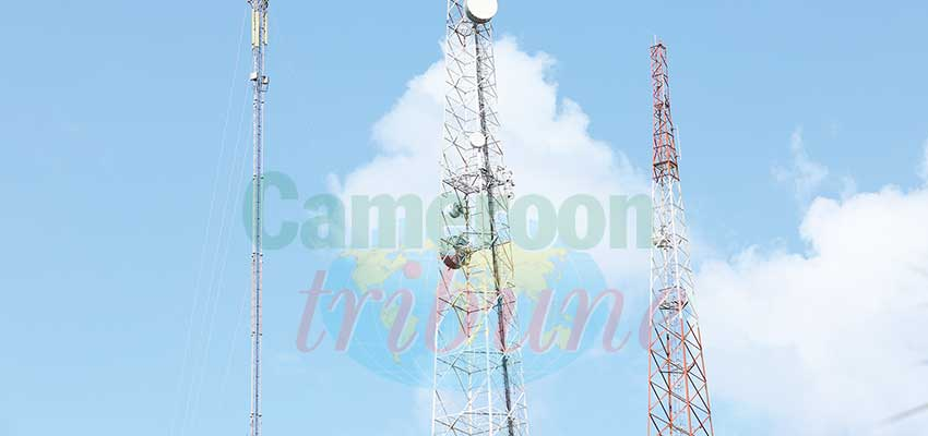Non-compliant telecom masts will be dismantled and their operators sanctioned.