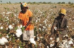 Image : Conjoncture: l'Afrique subsaharienne se relève