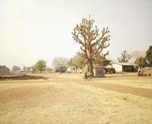 La ville aux baobabs