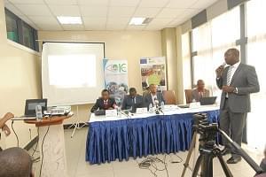 Exploitation forestière illégale: la lutte s'intensifie
