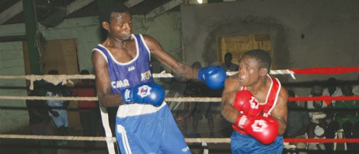Boxing: Federation Celebrates Medals