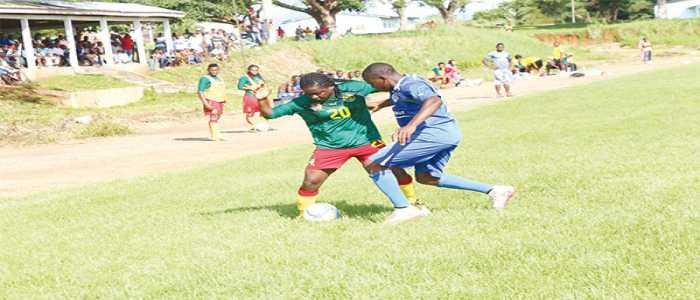 Image : Cameroon Mali Friendly in View