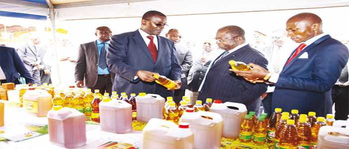 High Consumer Goods Promotional Sales: Underway In Yaounde
