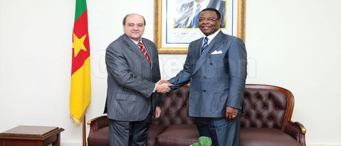 Egypt-Cameroon Cooperation: Aviation, Maritime Transport Accords Discussed