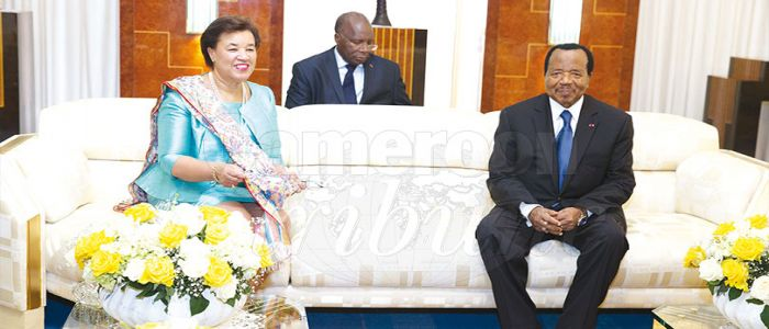 Cameroon-Commonwealth Relation; Standing By The Flag Of Peace