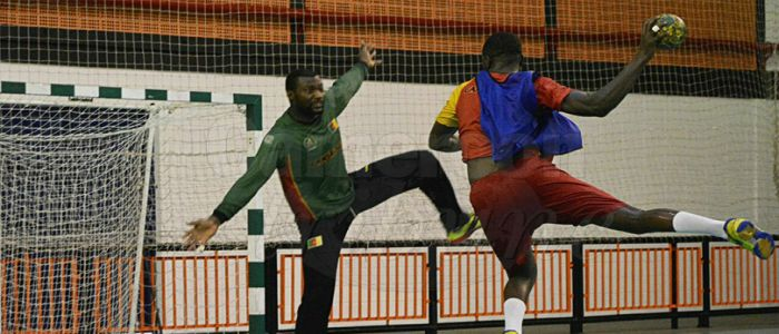 African Men's Handball Championship: Lions Poised For Victory